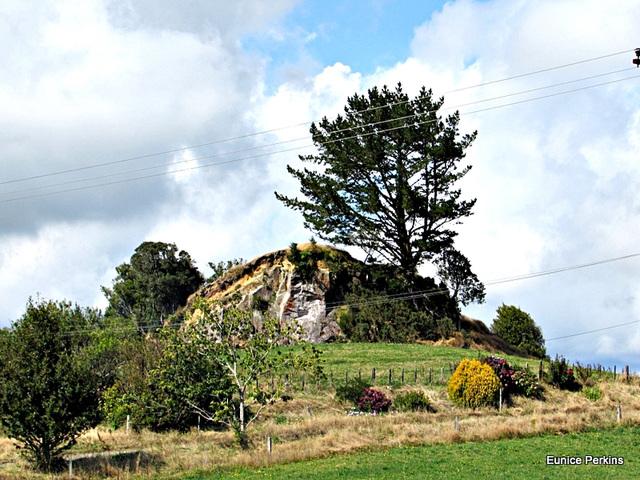 Large Mound Near Rotorua