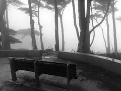 Seltsam im Nebel zu wandern ...