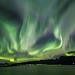 Northern Lights over Hadselfjord