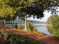 Le lac en toutes saisons / Lake in all seasons [ON EXPLORE]