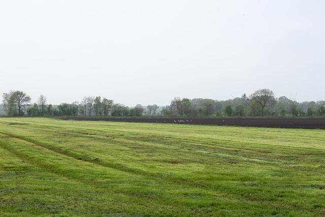 05-15 Ein weites Feld