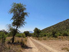 East Hunter Canyon Road