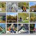 Herbstspaziergang - Autumn walk