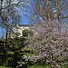 Parc oriental de Maulévrier en Maine et Loire