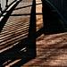 Licht und Schatten - Light and shadow - HFF
