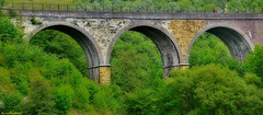 Monsal Head Viaduct / July 2015