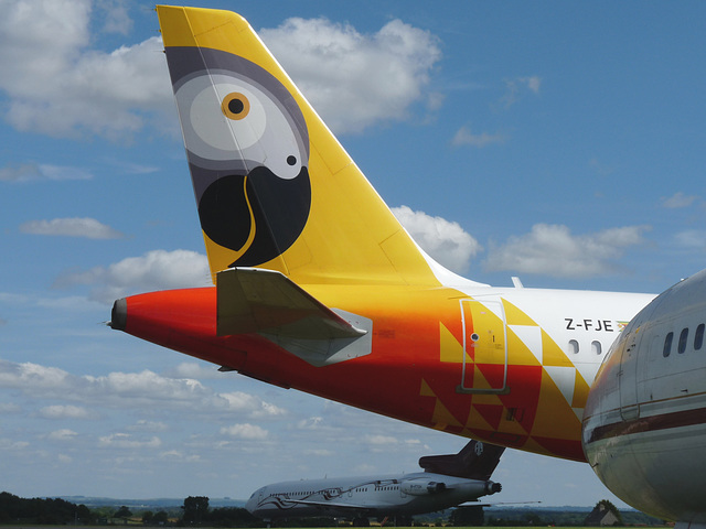 Tail of Airbus A319-131 Z-FJE (Fastjet Zimbabwe)