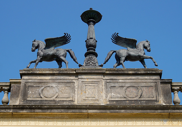 Pegasus-Zwillinge
