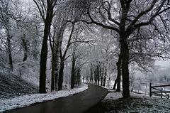 Der Winter ist wieder zurück - Winter is back again