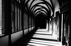 Gotischer Kreuzgang - Gothic cloister