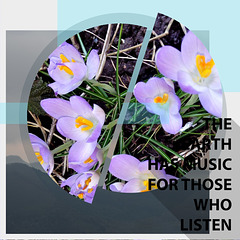 NATURE (THE EARTH HAS MUSIC FOR THOSE WHO LISTEN)