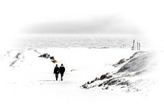 Walking the Beach / Strandspaziergang (240°)