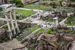 Roma: Foro and ants