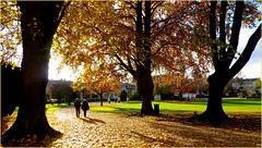 Le parc Louis PASTEUR...
