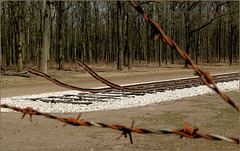 HFF: National Monument 'Camp Westerbork'... We'll never forget!