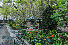 The 10 Best Places to see, Spring Bloom in NYC - 2016 ..SPRING IN THE GARDEN Primavera en el Jardín