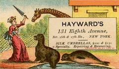 Hayward's—Silk Umbrellas a Specialty