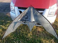 Venom by Kites Up