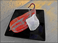 The 50 Images Project - Tea Bag - 49/50 - teabag & cocoa been