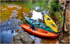 Ilhéus : raftin nel rio Tijupe