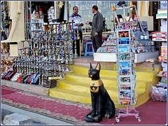 SHARM EL-SHEIK : Candelabri per tutti i gusti !!