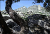 Sierra de La Cabrera and an exuberence of granite.