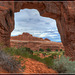 #24 - Looking through Pine Tree Arch