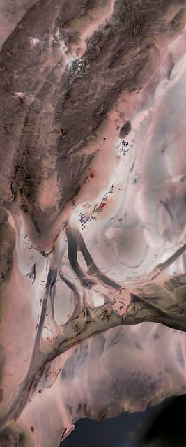 internal landscapes 1