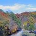 Fall in Rural Alabama