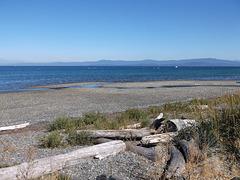 Débris de plage rugueuse / Detriti spiaggia ruvida