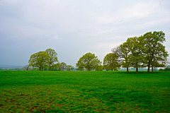 Keele University fields