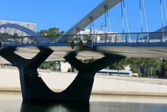 Le Pont Schuman sur la Saône (Lyon)