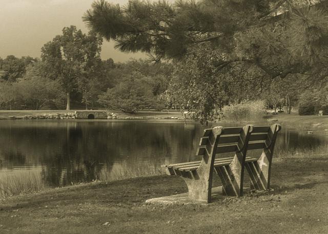 bench1-bw