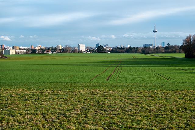 frankfurtblick-1220286-co-10-01-16
