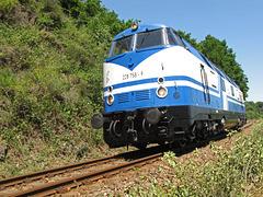 228 758-9 (ex. DR V180) der Rennsteigbahn zwischen Leisnig und Großbothen
