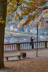 Selfie Shooter in Heidelberg (and 7 PIPs) (300°)