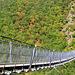 Hängeseilbrücke, Geierlay, Mörsdorf, Hunsrück, 360 m.