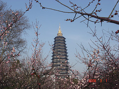 Tianning-a Pagodo