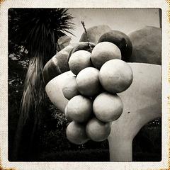 Fruit compote, Australia
