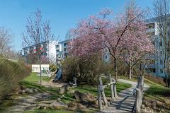 Frühlings HBM