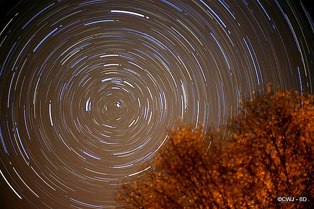 Startrails 2015 11 03 around Polaris from the courtyard this evening