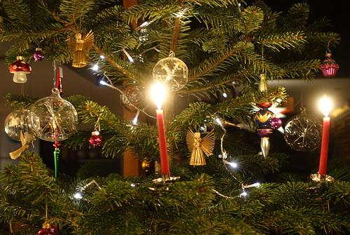 weihnachtsbaum 0406