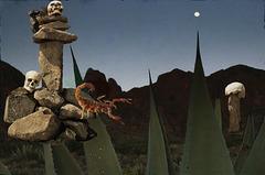 burial cairns in california desert