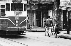 (in)Famous Kolkata Tram