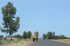 Ethiopia, On the Road Again