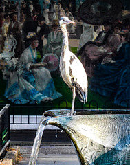 Heron and fresco
