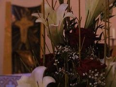 Kreuz und Lilien