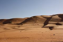 Wahiba Sands Desert (Oman)
