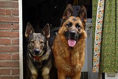 Maxi en Pim