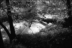 Ditch near Kew